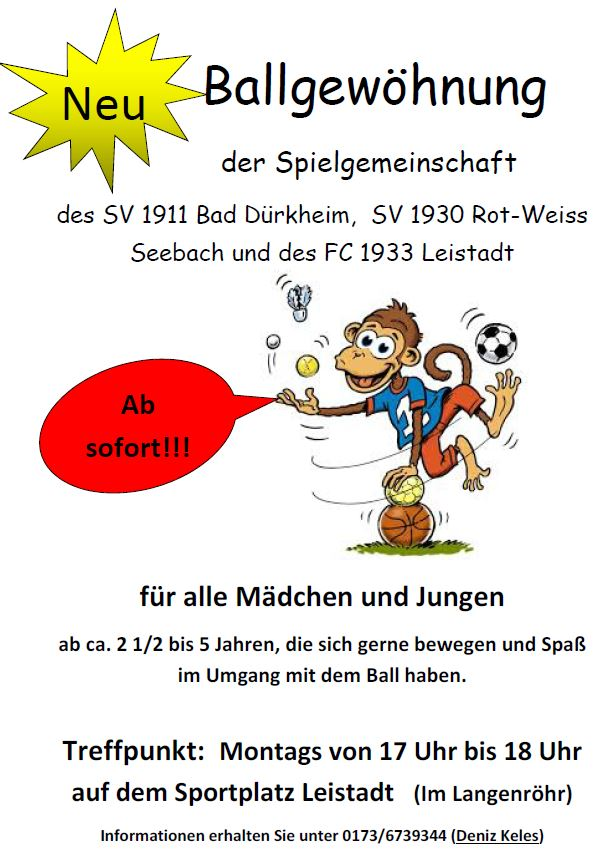 Thumbnail Flyer Ballgewöhnung
